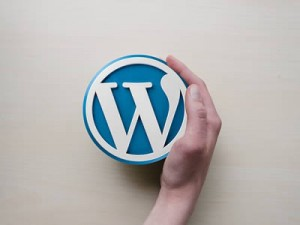 What Makes WordPress Such a Good CMS?